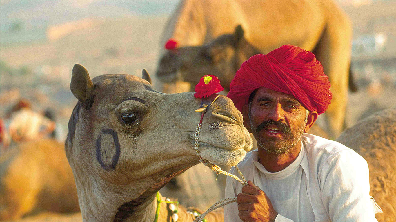 Pushkar Festival Tour Package