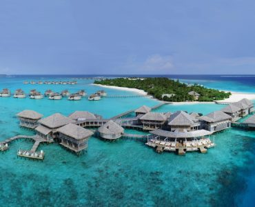 SAFARI & BEACH: TIGERS & THE MALDIVES