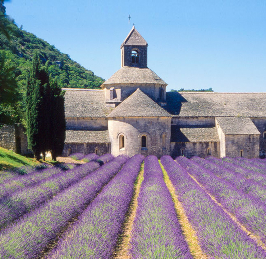 Invigorating Journey to the 5 Least Crowded Cities of France